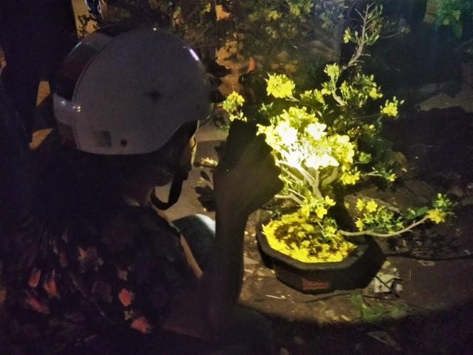 Đêm giao thừa người TPHCM soi đèn mua hoa Tết giải cứu nông dân - ảnh 4