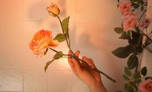 Món quà đặc biệt của những người siêu nhạy cảm - Highly Sensitive Person (HSP) - ảnh 5