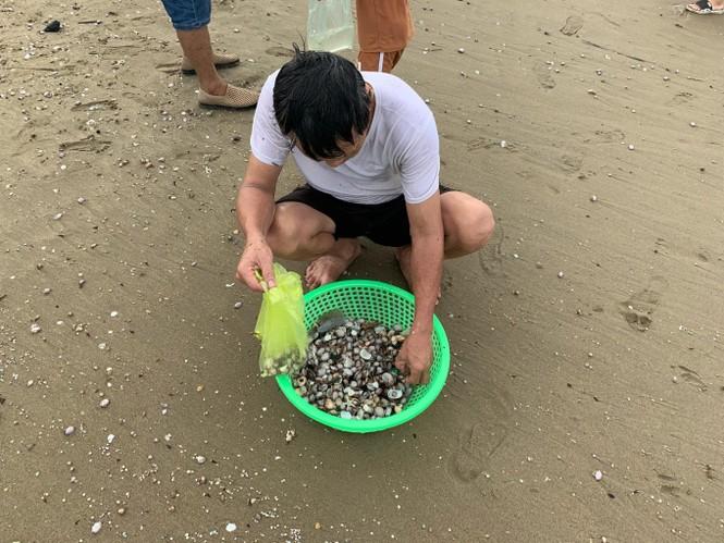 """Sau bão Podul, hàng trăm du hào hứng ra bãi biển Cửa Lò nhặt """"lộc trời"""" - ảnh 2"""