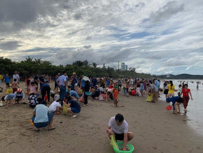 """Sau bão Podul, hàng trăm du hào hứng ra bãi biển Cửa Lò nhặt """"lộc trời"""" - ảnh 1"""