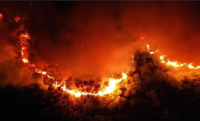 Phạt 7 năm tù người đàn ông châm lửa đốt rác làm cháy rừng lớn nhất Hà Tĩnh - ảnh 2