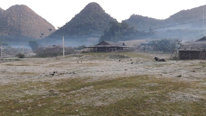 Băng giá phủ kín rừng cây, bãi cỏ ở huyện biên giới Nghệ An - ảnh 8