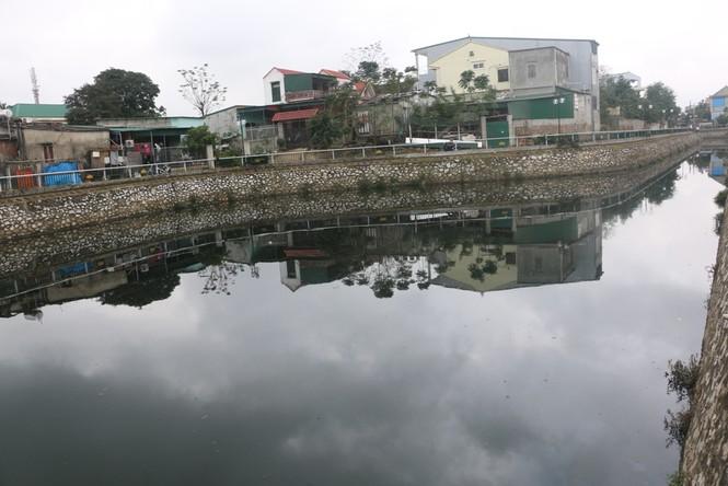Ô nhiễm nghiêm trọng tại hào Thành cổ Vinh - ảnh 8
