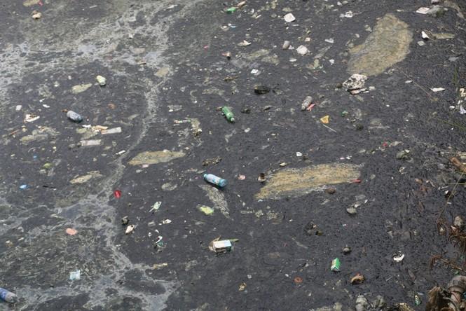 Ô nhiễm nghiêm trọng tại hào Thành cổ Vinh - ảnh 4