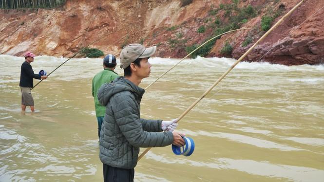 """Hồ Kẻ Gỗ xả lũ, dân kéo nhau đi săn cá """"khủng"""" - ảnh 3"""