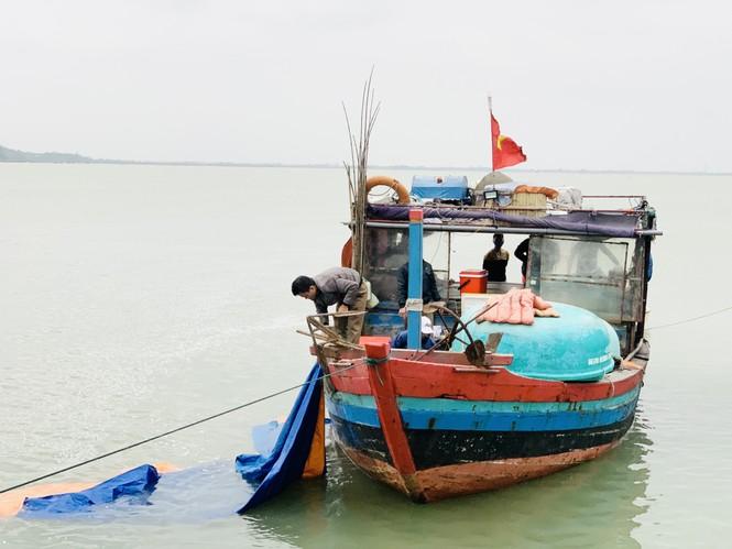 """Ngư dân """"hốt bạc"""" nhờ lộc biển cuối năm - ảnh 4"""