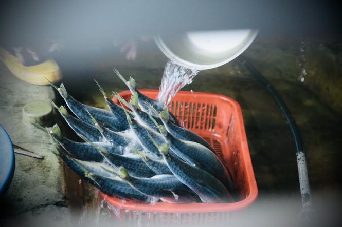 Thơm lừng làng cá nướng ngày Đông giá - ảnh 3