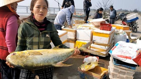 Trúng đậm mẻ cá chim vàng, ngư dân thu về khoảng 600 triệu đồng - ảnh 5