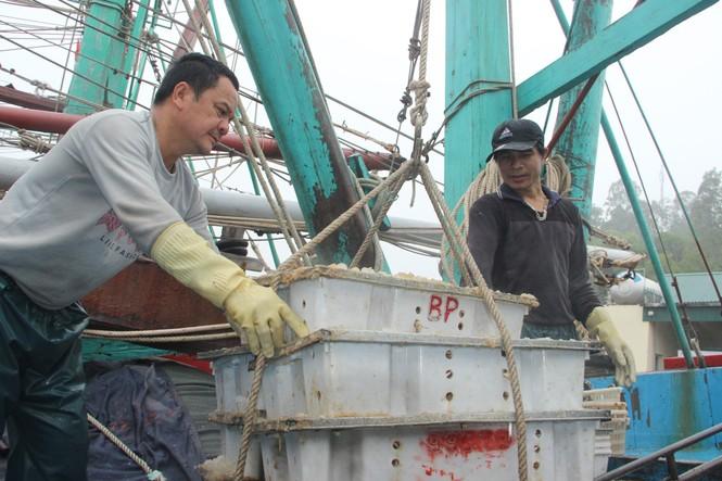 Ngư dân Nghệ An trúng đậm cá trỏng phục vụ thị trường Tết - ảnh 5