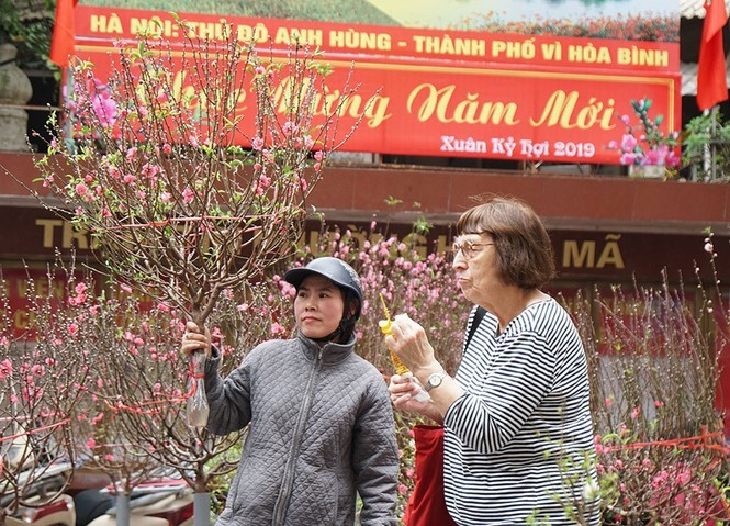 Chờ đón chợ hoa Tết Hàng Lược và không gian Bích họa Phùng Hưng - ảnh 1