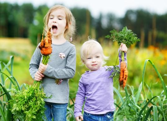 5 thói quen lành mạnh cha mẹ nên làm gương cho trẻ - ảnh 2