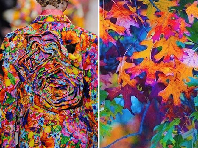 'Sững sờ' những bộ váy tuyệt đẹp lấy cảm hứng từ thiên nhiên - ảnh 17