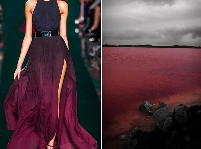 'Sững sờ' những bộ váy tuyệt đẹp lấy cảm hứng từ thiên nhiên - ảnh 5