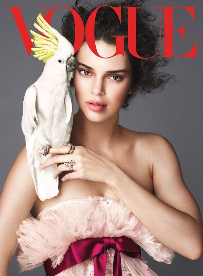 Kendall Jenner phủ nhận đồng tính - ảnh 2