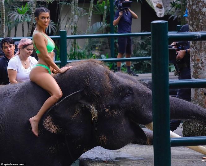 Kim Kardashian diện bikini cưỡi voi ở Bali - ảnh 9