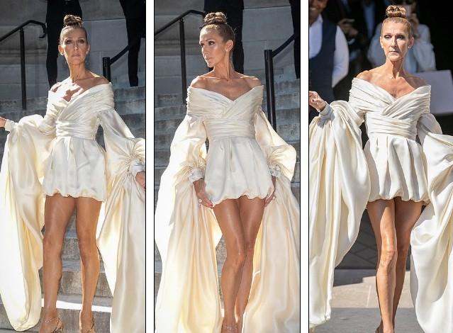 Celine Dion hóa nữ hoàng gợi cảm ở tuổi 51 - ảnh 3