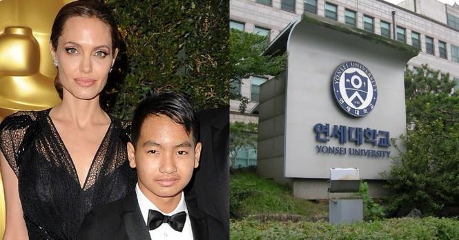 Angelina Jolie đưa con trai Maddox nhập trường đại học ở Hàn Quốc - ảnh 1