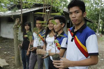 Dự luật Philippines yêu cầu sinh viên trồng ít nhất 10 cây xanh trước khi tốt nghiệp - ảnh 1