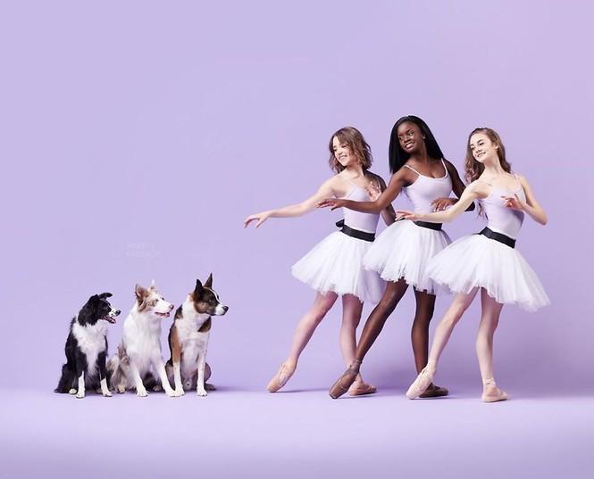 Dàn vũ công ba lê bay bổng tuyệt đẹp cùng những chú chó - ảnh 28