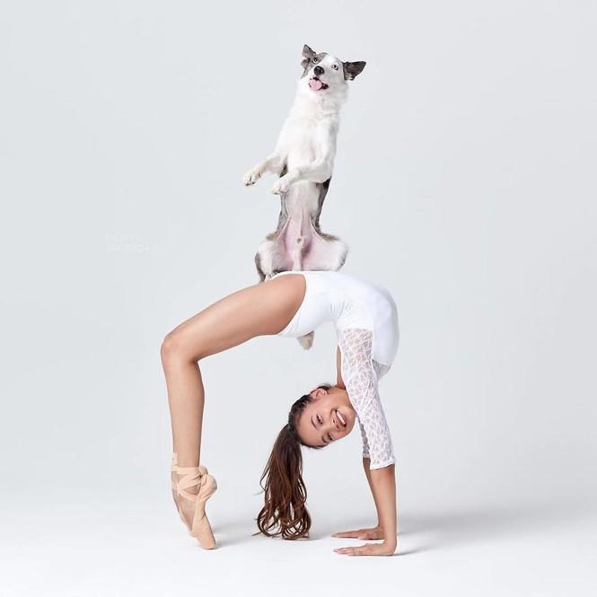 Dàn vũ công ba lê bay bổng tuyệt đẹp cùng những chú chó - ảnh 26