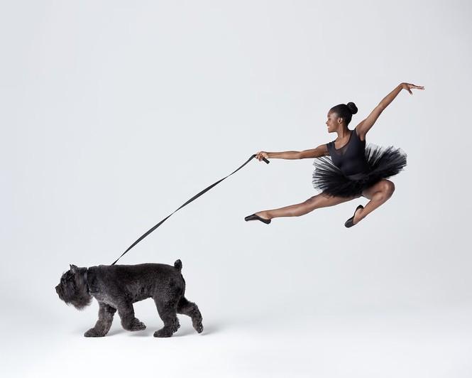 Dàn vũ công ba lê bay bổng tuyệt đẹp cùng những chú chó - ảnh 15