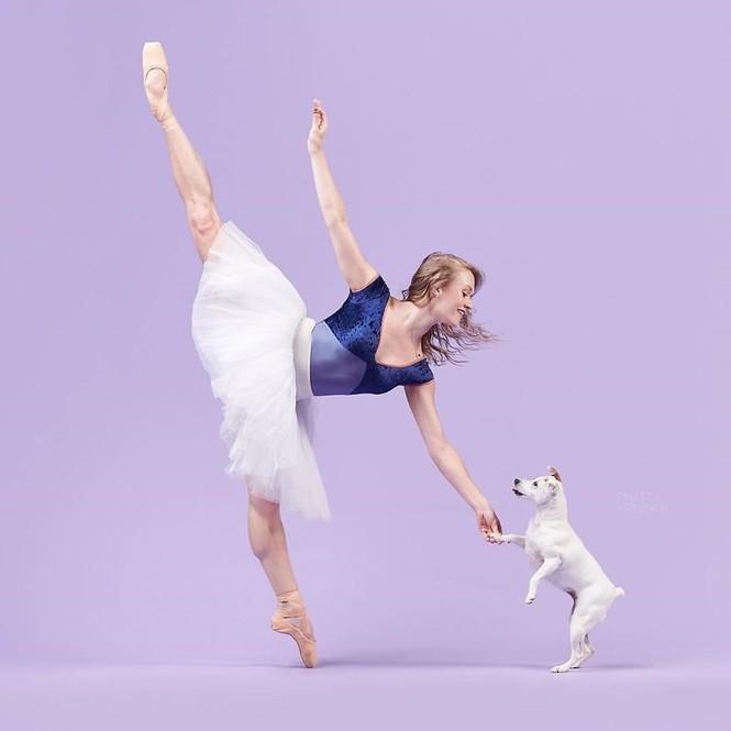 Dàn vũ công ba lê bay bổng tuyệt đẹp cùng những chú chó - ảnh 16