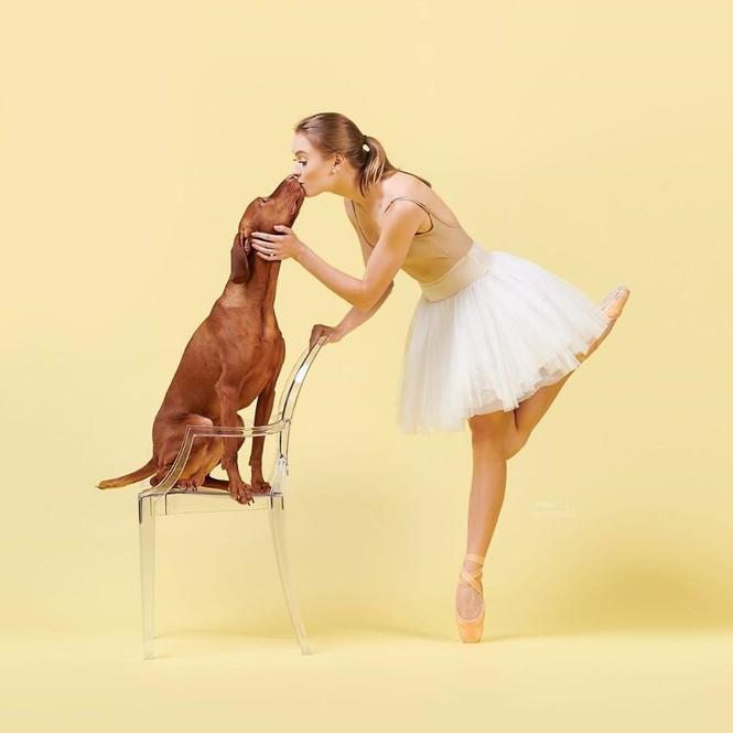 Dàn vũ công ba lê bay bổng tuyệt đẹp cùng những chú chó - ảnh 18