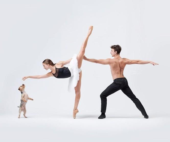 Dàn vũ công ba lê bay bổng tuyệt đẹp cùng những chú chó - ảnh 22