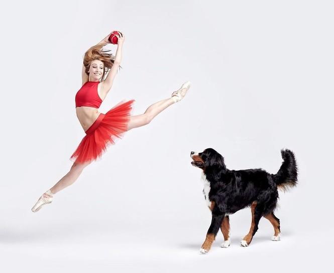 Dàn vũ công ba lê bay bổng tuyệt đẹp cùng những chú chó - ảnh 20