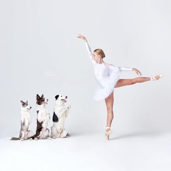 Dàn vũ công ba lê bay bổng tuyệt đẹp cùng những chú chó - ảnh 23