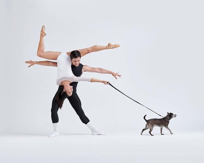 Dàn vũ công ba lê bay bổng tuyệt đẹp cùng những chú chó - ảnh 25