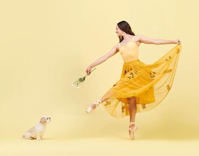 Dàn vũ công ba lê bay bổng tuyệt đẹp cùng những chú chó - ảnh 19