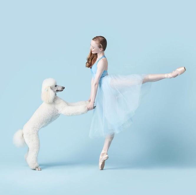Dàn vũ công ba lê bay bổng tuyệt đẹp cùng những chú chó - ảnh 30