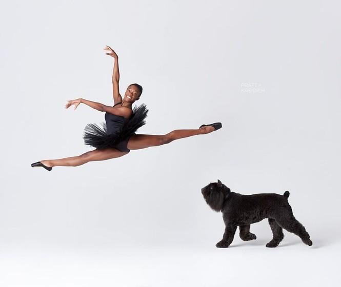 Dàn vũ công ba lê bay bổng tuyệt đẹp cùng những chú chó - ảnh 29