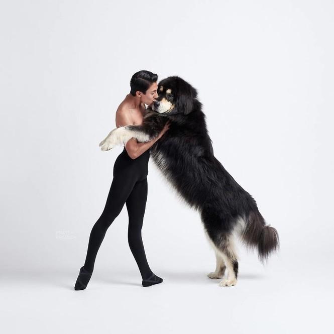 Dàn vũ công ba lê bay bổng tuyệt đẹp cùng những chú chó - ảnh 10