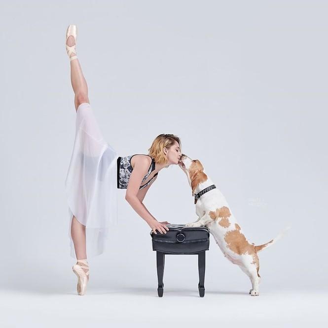 Dàn vũ công ba lê bay bổng tuyệt đẹp cùng những chú chó - ảnh 5