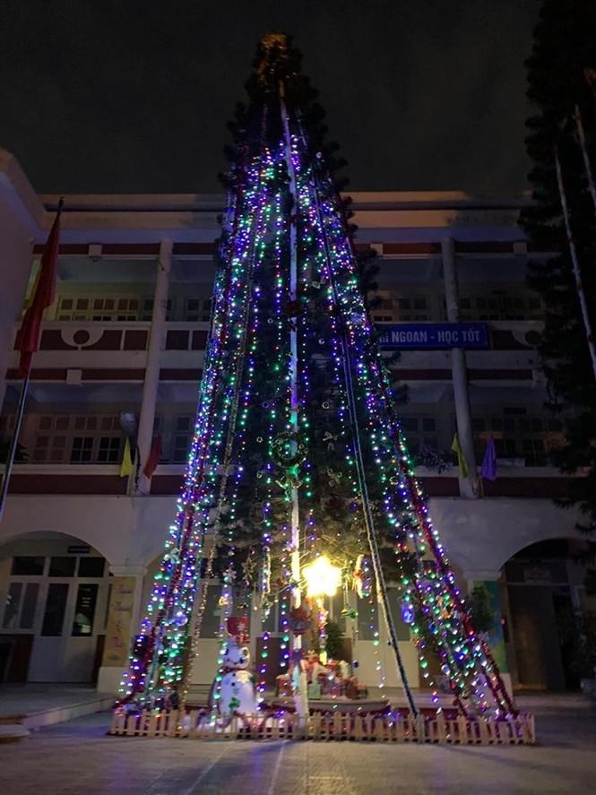 Học sinh háo hức ngắm cây thông 'siêu to khổng lồ' hơn 15m ở Hà Nội - ảnh 8