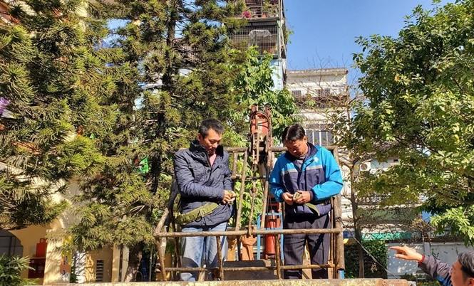 Học sinh háo hức ngắm cây thông 'siêu to khổng lồ' hơn 15m ở Hà Nội - ảnh 3