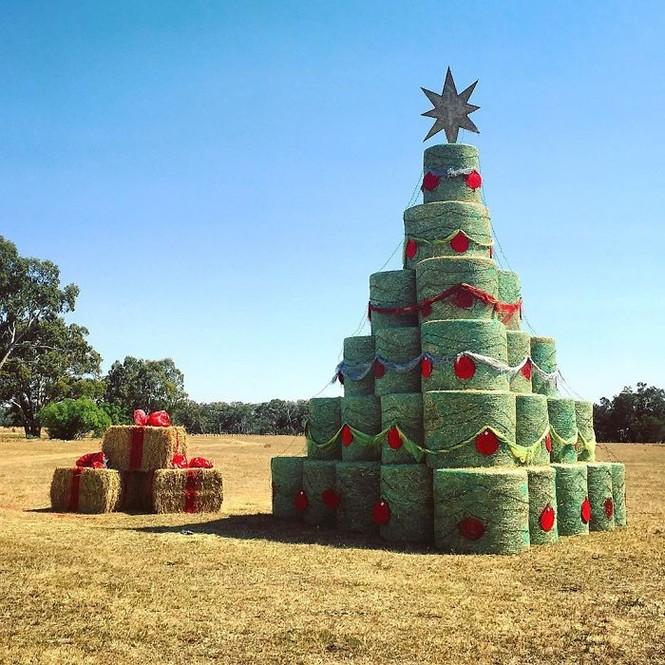 Thích mê những cây thông Noel 'có một không hai' của dân mạng - ảnh 9