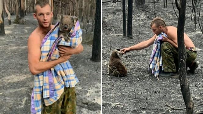 Chàng trai 22 tuổi thành anh hùng cứu 9 gấu koala trong cháy rừng ở Úc - ảnh 3