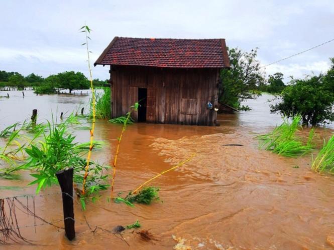 Từ 20 giờ tối nay, Đà Nẵng yêu cầu người dân không ra khỏi nhà để tránh bão số 9 - ảnh 28