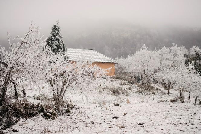 Cặp đôi chụp ảnh cưới lãng mạn giữa tuyết trắng ở Y Tý - ảnh 2