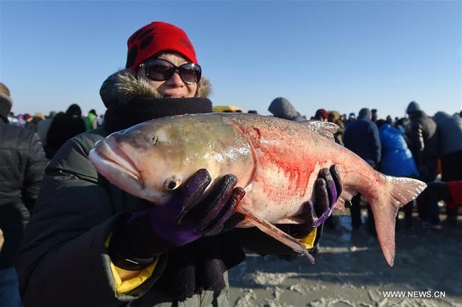 Độc đáo lễ hội khoan băng bắt cá ở Trung Quốc - ảnh 4