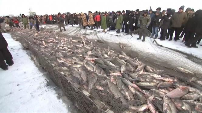 Độc đáo lễ hội khoan băng bắt cá ở Trung Quốc - ảnh 7