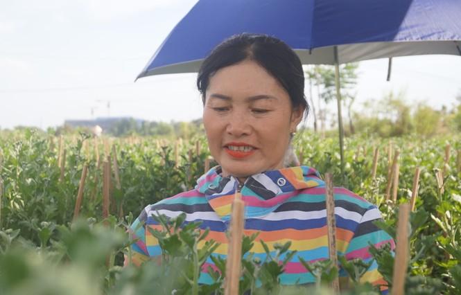 Nhà vườn TPHCM thấp thỏm vụ hoa Tết - ảnh 3