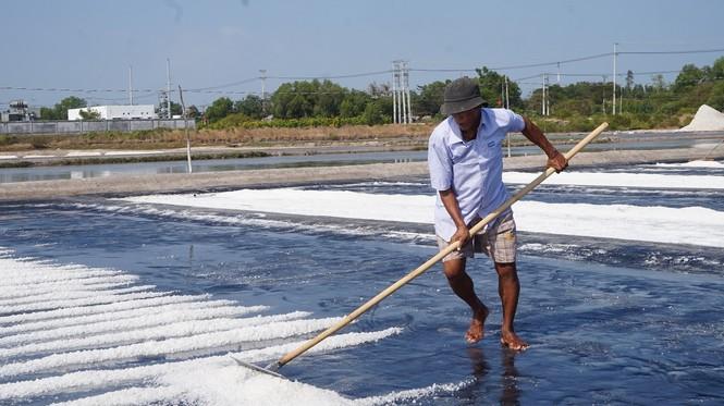 Cận cảnh 'nghề gieo nước biển' đầu năm ở phương Nam - ảnh 7