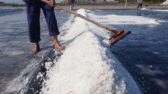 Cận cảnh 'nghề gieo nước biển' đầu năm ở phương Nam - ảnh 8