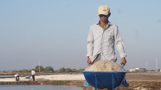 Cận cảnh 'nghề gieo nước biển' đầu năm ở phương Nam - ảnh 1