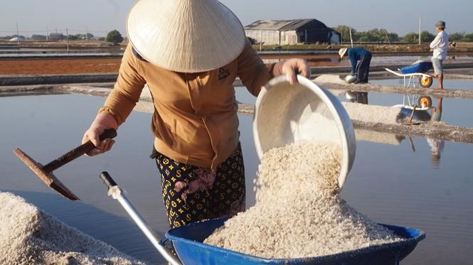 Cận cảnh 'nghề gieo nước biển' đầu năm ở phương Nam - ảnh 9