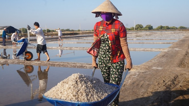 Cận cảnh 'nghề gieo nước biển' đầu năm ở phương Nam - ảnh 10